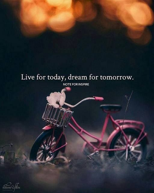 Positive Quotes Live For Today Dream For Tomorrow Hall Of