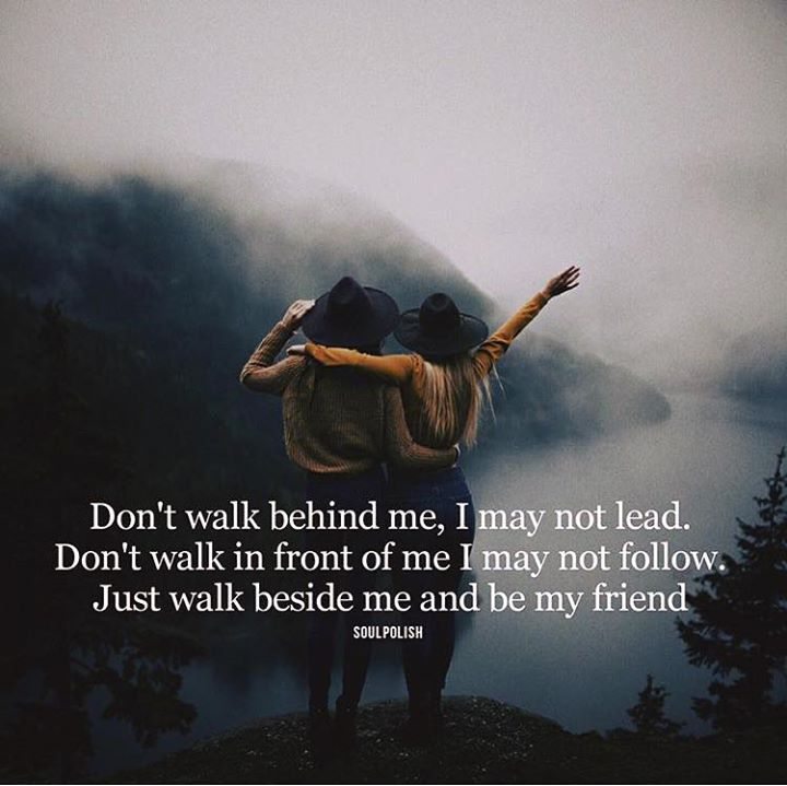Positive Quotes Dont Walk Behind Me I May Not Lead Hall Of
