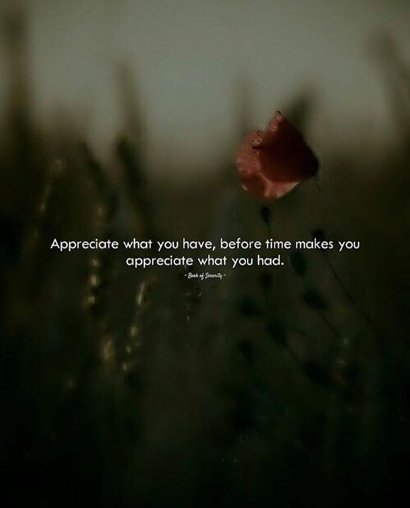 Positive Quotes Appreciate What You Have Before Time Makes You