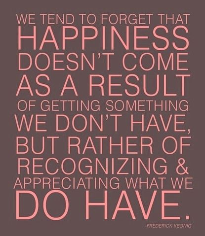 Quotes About Happiness Appreciate What You Have Right Now