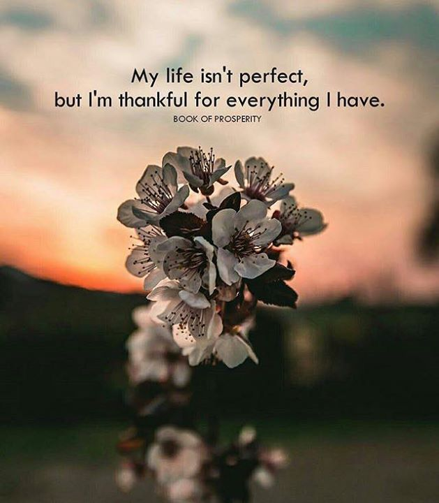 Positive Quotes My Life Isnt Perfect But Im Thankful Hall