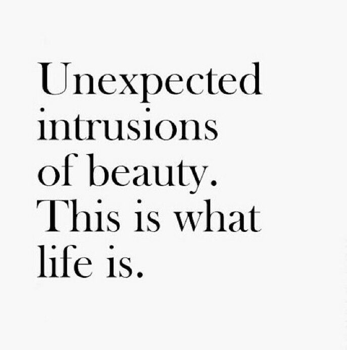 Positive Quotes Unexpected Intrusions Of Beauty This Is What Life