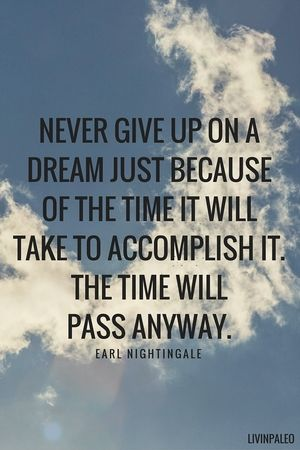 Positive Quotes Never Give Up On A Dream Just Because Of The Time