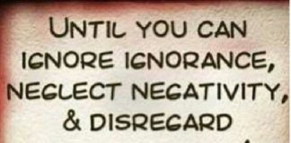 Best Quotes About Success: Ignoring Ignorance, Neglecting Negativity And  Disregarding.
