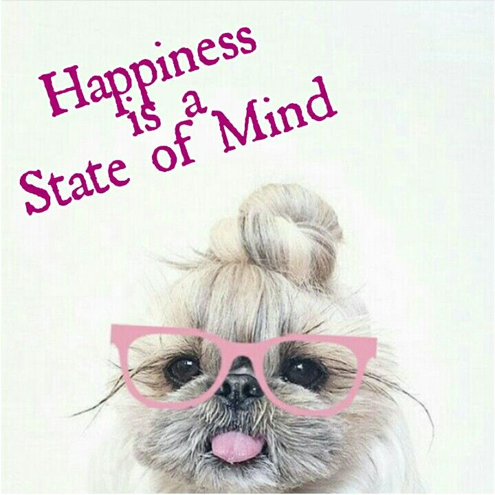 Positive Quotes Happiness Is A State Of Mind Hall Of Quotes