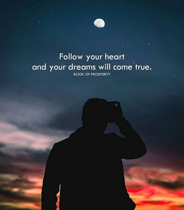 Positive Quotes Follow Your Heart Hall Of Quotes Your