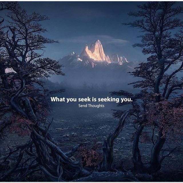 Positive Quotes What You Seek Is Seeking You Rumi Hall Of