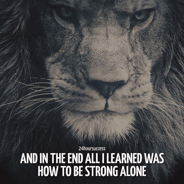 Positive Quotes : In the end all I learned was how to be strong