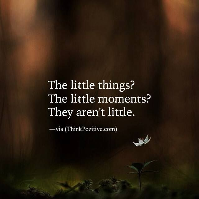 21 Best Images About Love It Hallways On Pinterest: Positive Quotes : The Little Things.....