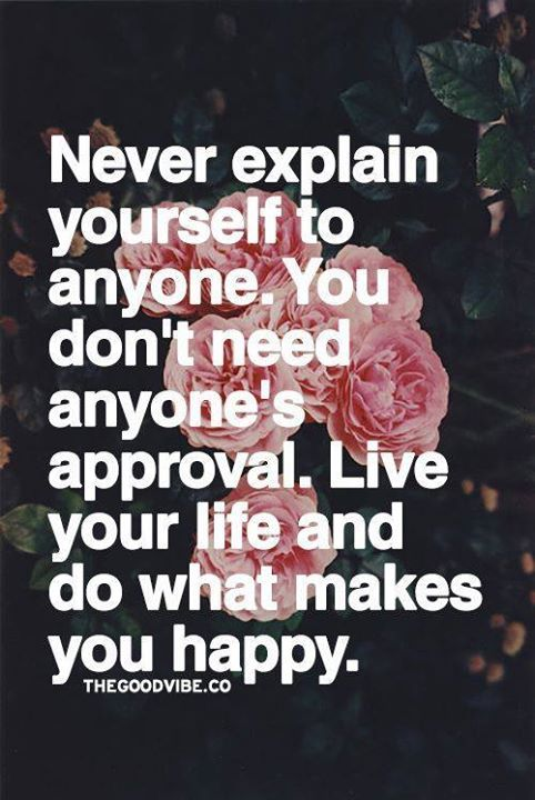 Quotes To Live Your Life By Unique Positive Quotes  Never Explain Yourself To Anyoneyou Don't Need