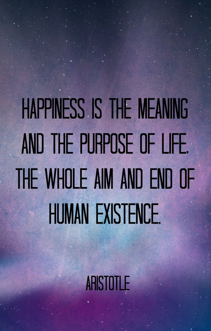 Philosophy In Life Quotes Happy Quotes  Always Pursue Happiness  Jj Hall Of Quotes