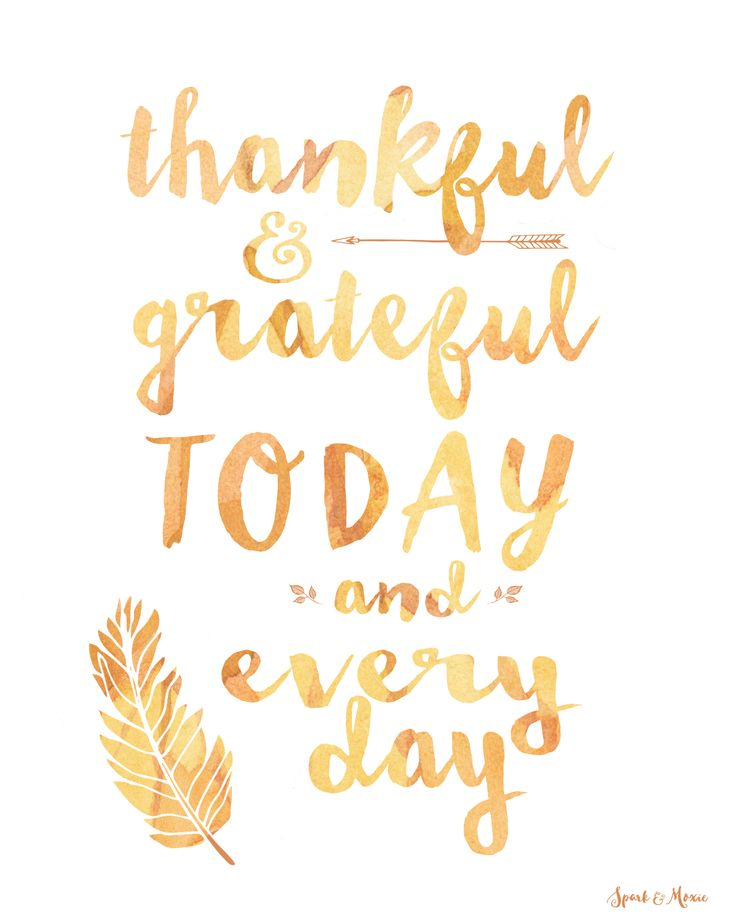 "Thanksgiving Inspirational Quotes Positive Quotes  ""Thankful & Grateful Today And Every Day ."