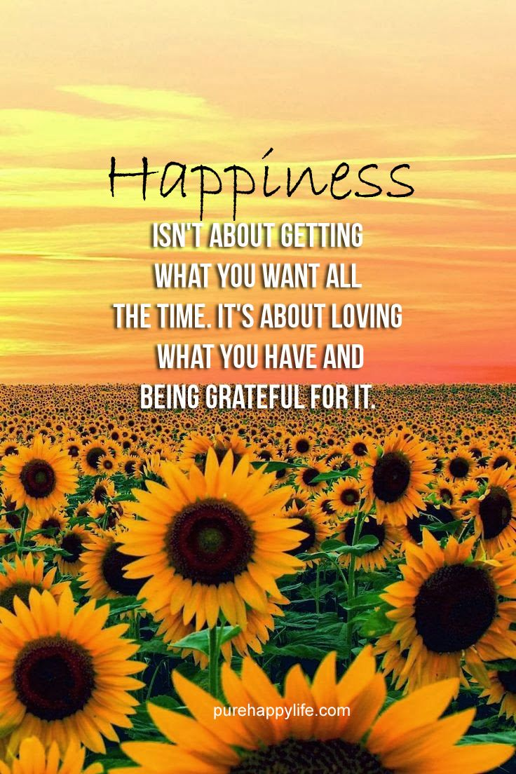 Happiness Isnt About...more On