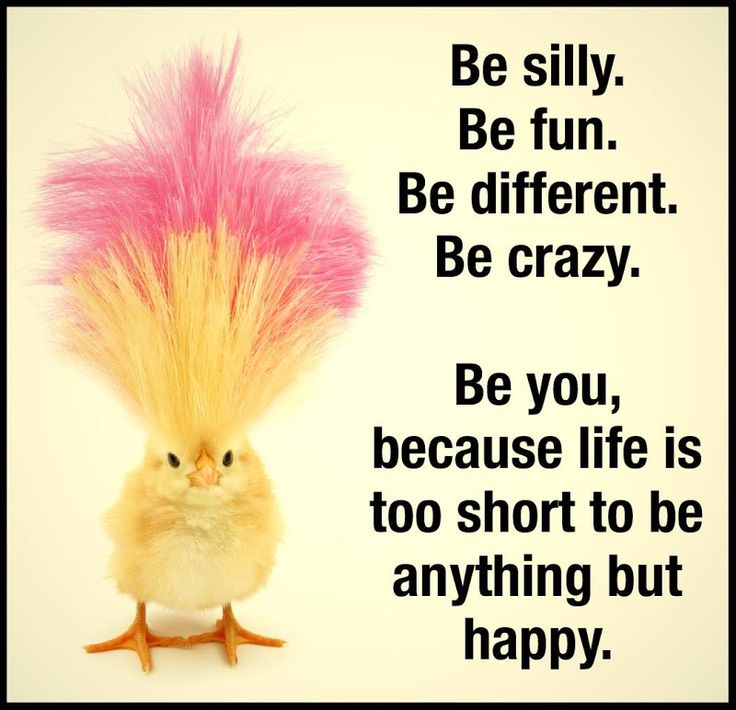Happy Quotes Be Silly Be Fun Be Different Be Crazy Hall Of