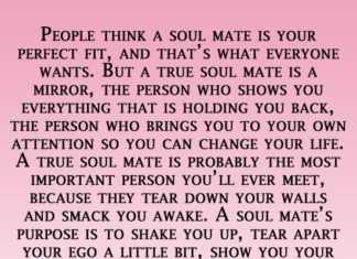 Soulmate Archives Page 262 Of 706 Hall Of Quotes Your Daily