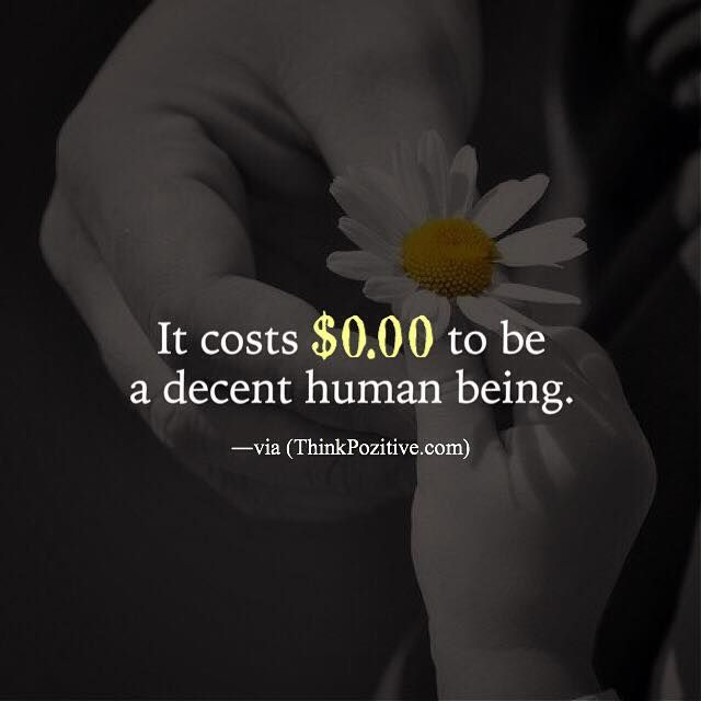 Positive Quotes It Costs 000 To Be A Decent Human Being Via