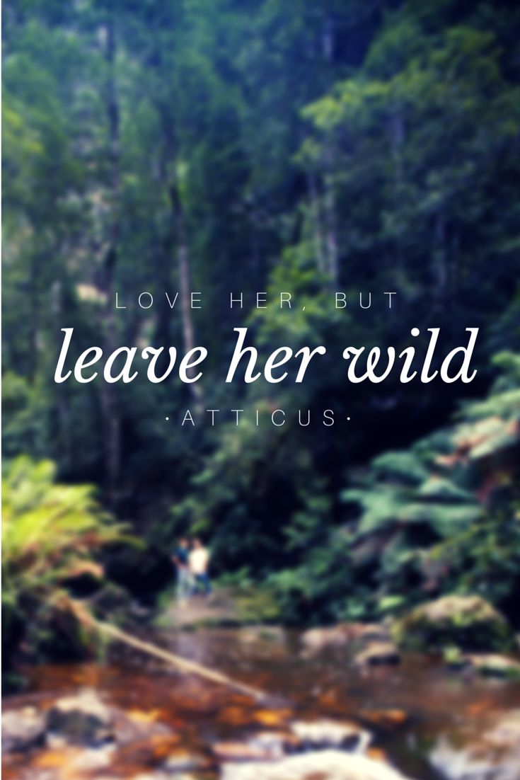 Love Quotes American Hippie Leave Her Wild Hall Of Quotes