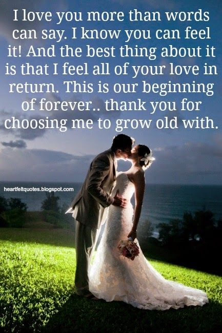Love Quotes Wedding Love Quotes Hall Of Quotes Your Daily