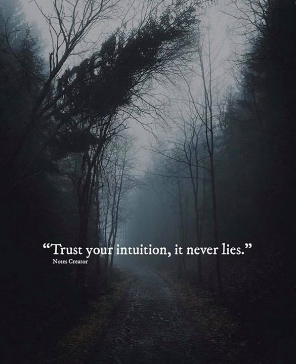 Positive Quotes Trust Your Intuition It Never Lies Hall Of